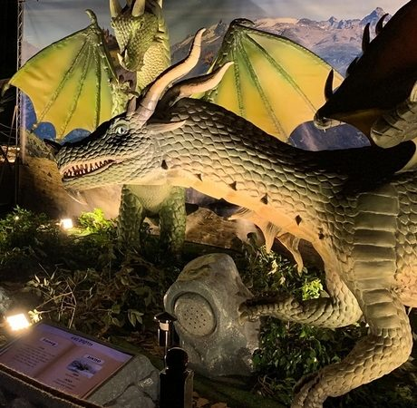 The brand new exhibition Game of Dragons opened for the very first time in Tel Aviv